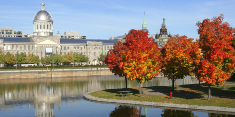montreal quebec canada fall foliage autumn