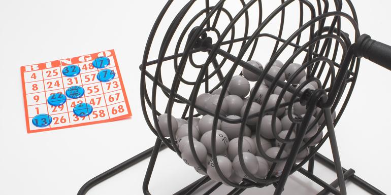bingo cruise too expensive