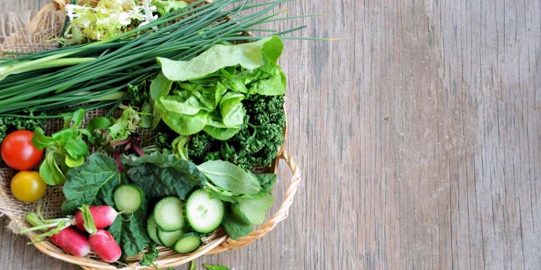 vegetarian vegan cruise ship food dining