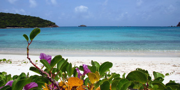 What to do in St. Croix