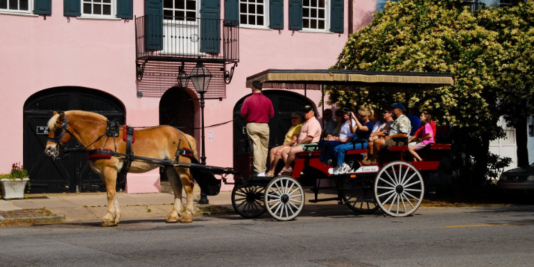 horse carriage tourism charleston south carolina