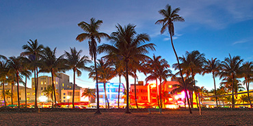 What to do in Miami Before Your Cruise